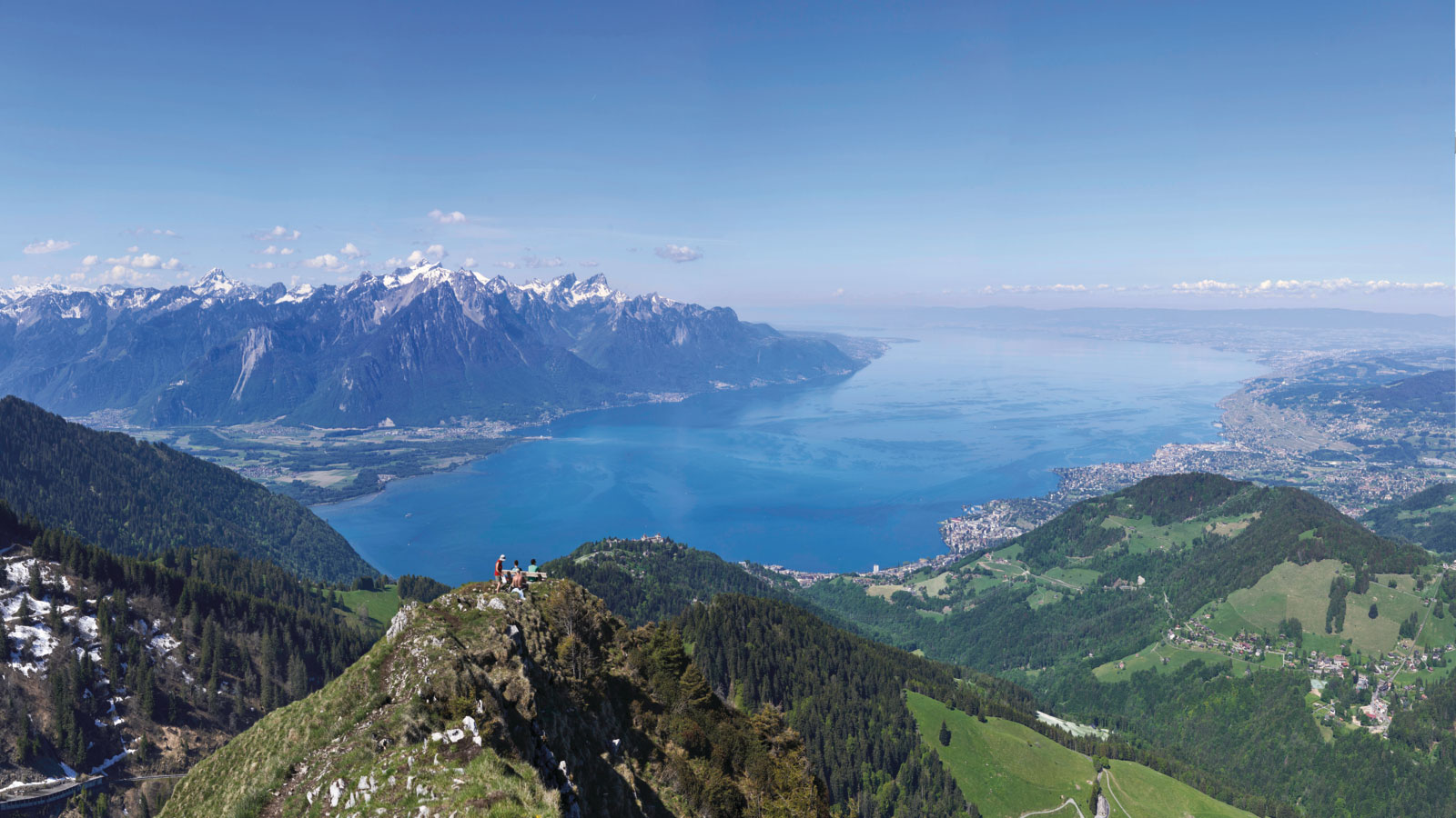 SEG mountain view