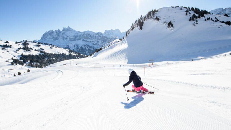 SEG swiss skiing